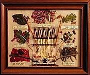 american indian herbal remedies