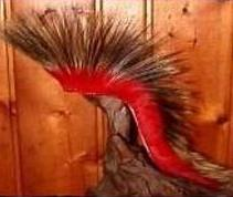american indian made beaded feather native american