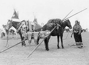 native american travois indian drag sleds for dogs and horses